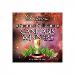CANNABIS WINNERS 2 DELICIOUS