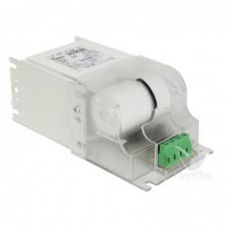 Camiseta do-g azul ripper...