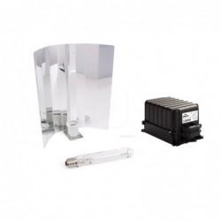 Camiseta chempie ripper seeds