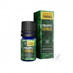 Terpeno pineapple express 5...